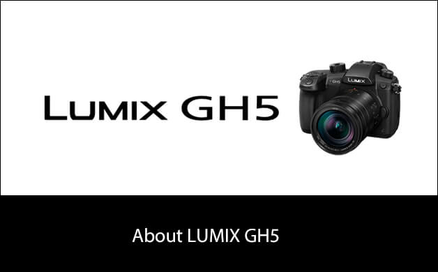 About LUMIX DMC-GX8